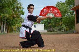kung fu mansuria braysports