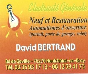 pub 250 300 DAVID BERTRAND