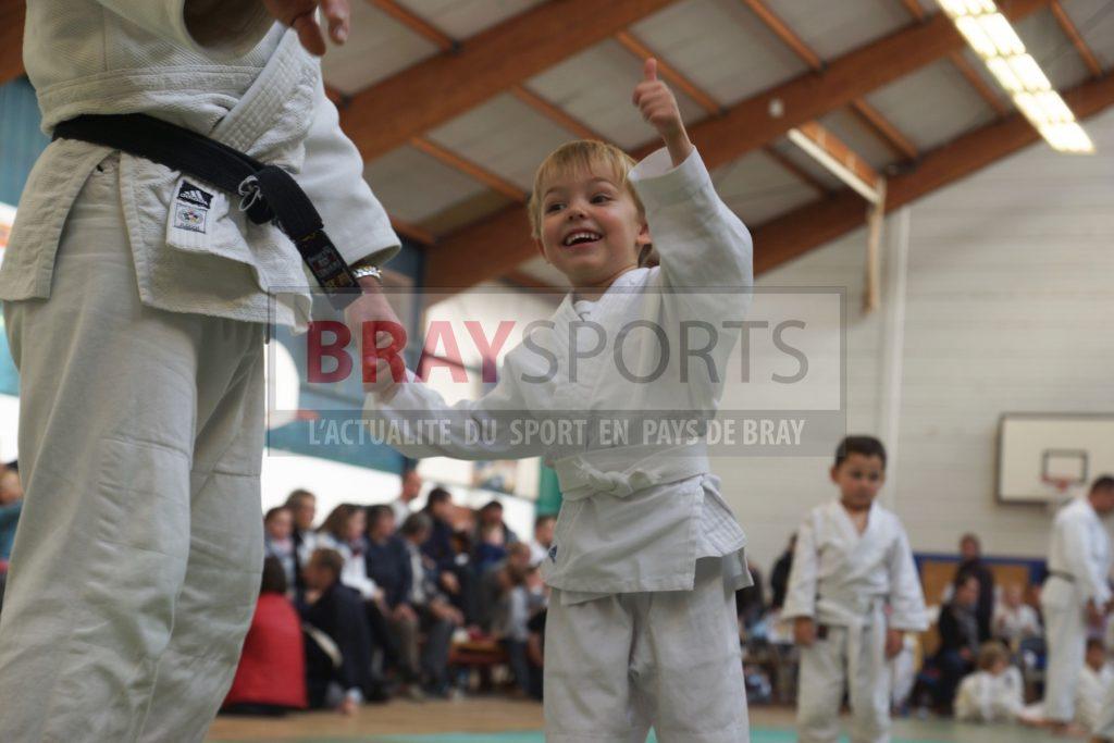 Tournoi Judo TICTAC Série N°2 6 novembre 2016